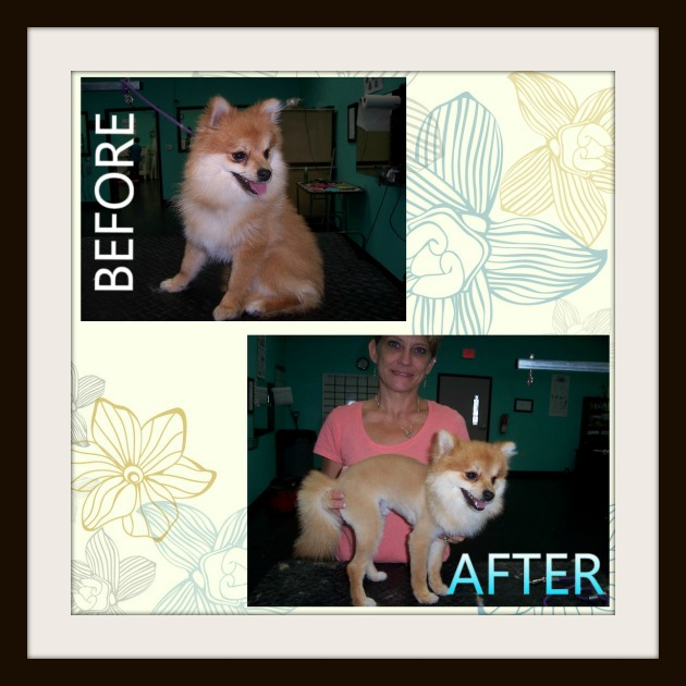 Before & After 6