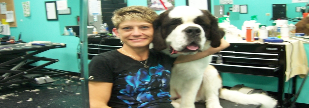 Dog Grooming School Just Four Paws Academy Of Pet Styling
